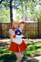 JellyCon 2014 Sailor Venus #2 by Lightning--Baron