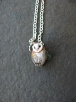 Barn Owl Necklace by life--in-technicolor