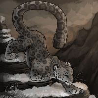 Kuba Snow Leopard Brushy Style by Ski-Machine