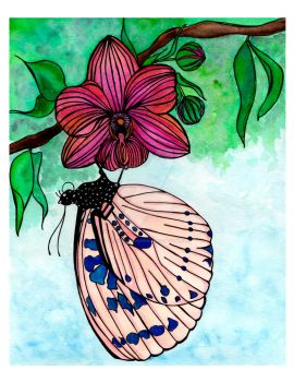 Spotted Butterfly Watercolor by pinkpolishdesign