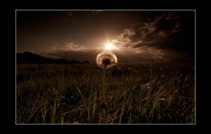 dusk and the dandelion clock by theoden06