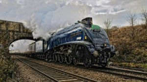 Sir Nigel Gresley 2 by wildbunchz