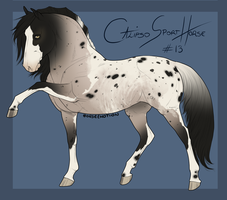 Calipso Import Horse #13 by BH-Stables