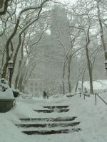 New York City in the Snow by Lexxa24