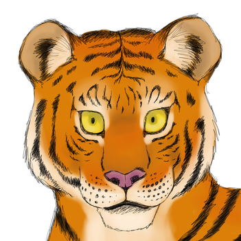 Tiger by catlover1672