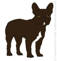 Chocolate French Bulldog by Tossu-sama