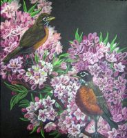 Robins in Spring by HouseofChabrier