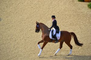 Olympic Horse Dressage by JozzC16