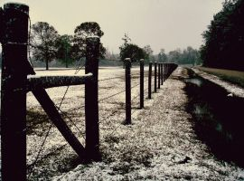 Country Winter by underdogg101