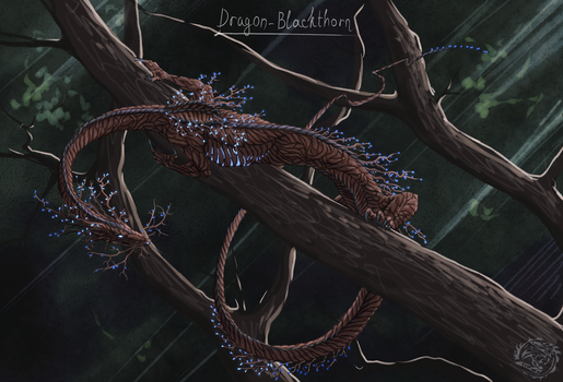 Blackthorn (night) by PacificDash