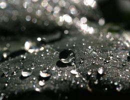 Dew 20D0033658 by Cristian-M