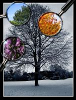 4 seasons by etiark