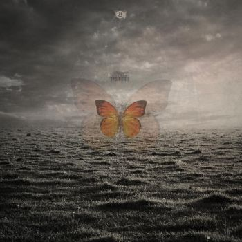 Butterfly Effect by w1zzy