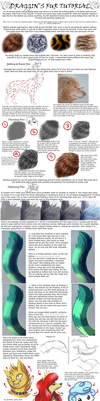 Painting and Stylizing Fur Tutorial by DragginCat