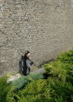 Gondor: Another soldier on the wall by Carancerth