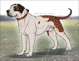 STS Dog - Richter - RETIRED by ShockTherapyStables