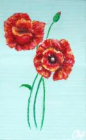 Poppies by caitiedidd