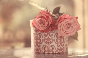 Vintage roses ... by aoao2