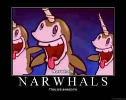 Awesome Narwhals by JoMactheJ