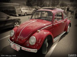 VolksWagen Beetle by PaSt1978