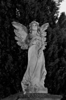 Don't blink by LauranneSM