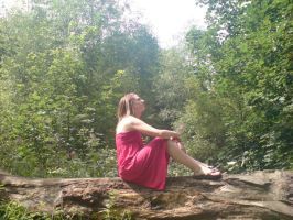 Sitting on a Log in summer by EmKins-Resources