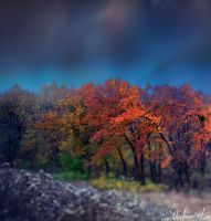 My October by kharlamov