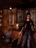 Witches Magic Shoppe by sweetpoison67