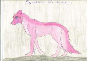 Sometimes Life Sucks...(as the pic says) by Wynter-Heart