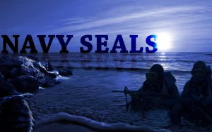 Navy Seals by KingGameDEsign