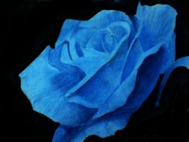 blue rose by littlemissharriet