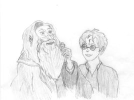 Harry and Dumbledore by caitiedidd