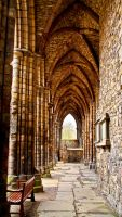 Hollyrood Abbey by gendosplace