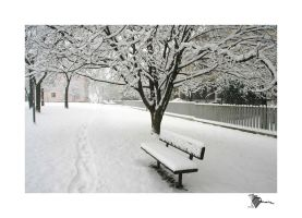 :: park bench by moiraproject