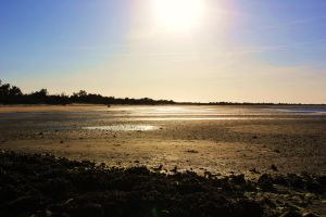 Low tide on Shack by denehy