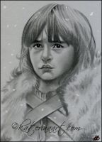 Bran Stark Game of Thrones SKETCH by Katerina-Art
