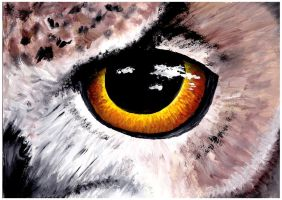 Owl Eye by Drakeshya