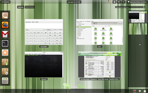 Linux Mint 11 with Gnome-Shell by malvescardoso