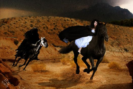 The Chase by consine