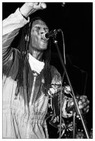 The Beat - Ranking Roger 02 by neolestat