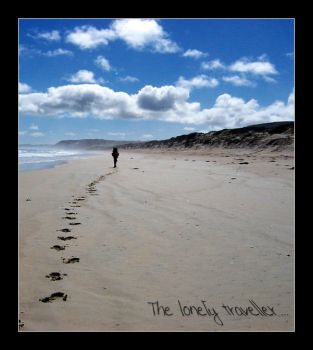 The lonely traveller by timbo