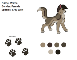Wolfie Reference by AJ-Shep