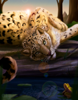 Leopard and the Frog by CALLYKITTY