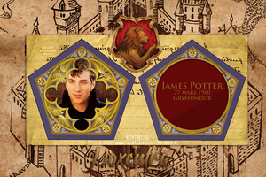 James Potter Chocolate Frog Card by N0xentra