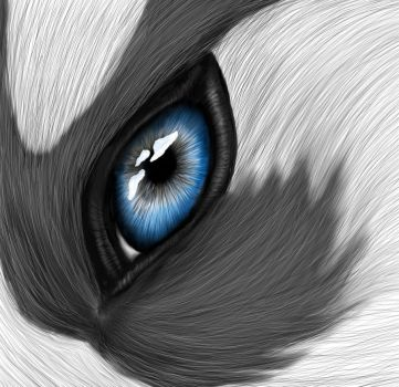Eye of the Husky by Kohanax