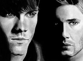 Winchester Boys by cconnell