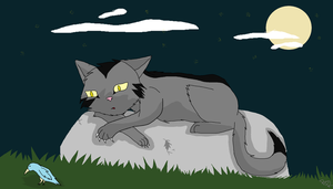 graystripe by souleatersheik