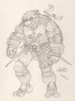 Turtles: Raphael by faceaway