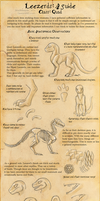 Leezerds: A Guide - Quad by MadMeeper