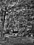 Ware Church Cemetery B+W by The-MooCow
